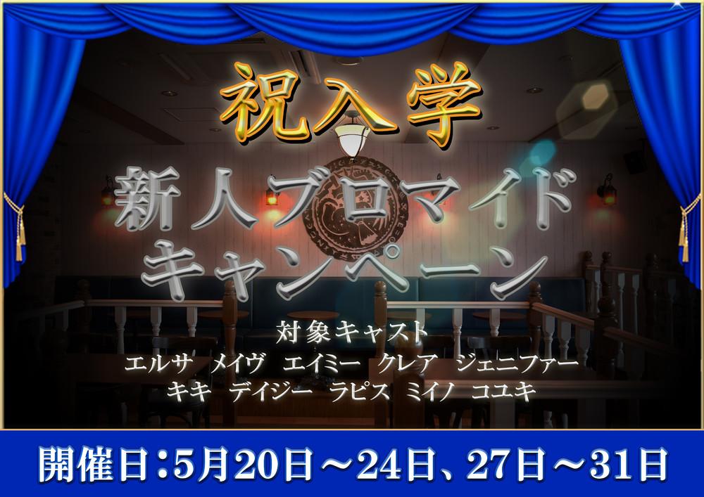 5/20~24 27~31 新人ブロマイドキャンペーン@クロニクルS