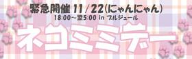 11/22 11(いい)22(にゃんにゃん)ネコミミデー@ブルジュール